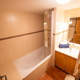 une des 3 salle de bains - Location de vacances - Saint-François-Longchamp