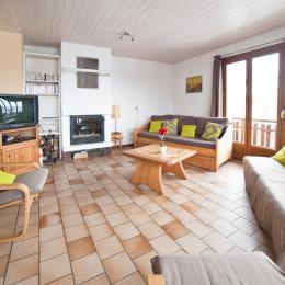 Appartement l'Adret - Col du Mollard  - station de ski Albiez Montrond en Savoie - salon - Location de vacances - Albiez-Montrond