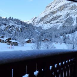 La terrasse ensoleillée et enneigée face au Grand Marchet et l'Isertan. Retour skis aux pieds par la piste rouge des Lanches - Location de vacances - Pralognan-la-Vanoise