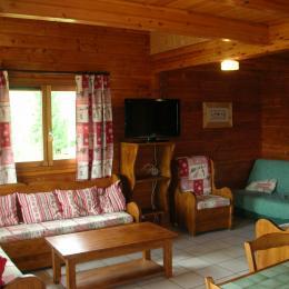 Appartement La Fromentière - Station de ski La Toussuire - Coin salon  - Location de vacances - La Toussuire