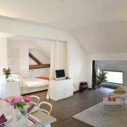 - Location de vacances - Saint-Pierre-d'Albigny