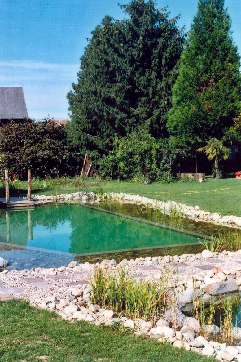 Le célèbre bassin de baignade naturelle... - Location de vacances - Trévignin