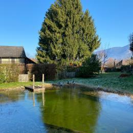 La piscine naturelle se réveille - Chambre d'hôtes - Trévignin