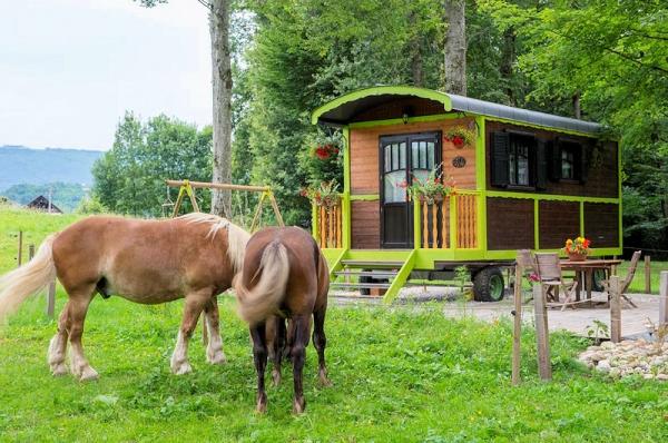 Calme et quiétude assurés avec nos chevaux comtois! - Location de vacances - Bloye
