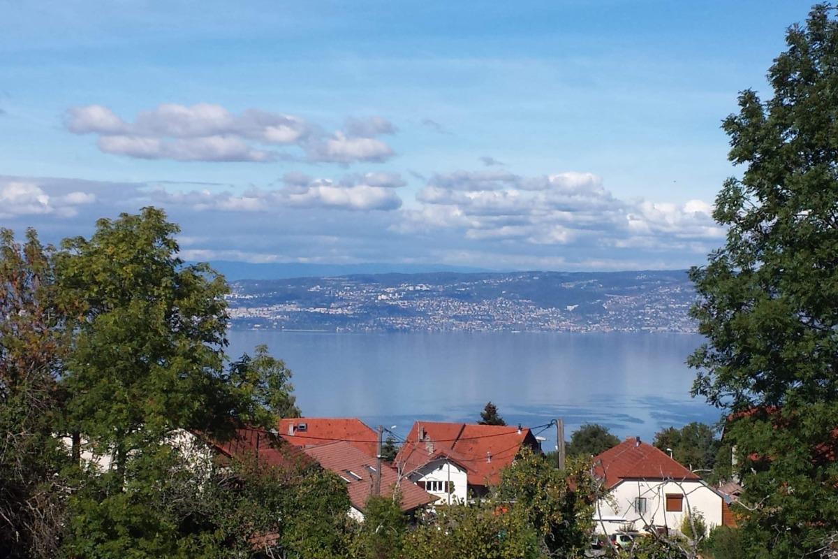 vue lac de la maison  - Location de vacances - Saint-Paul-en-Chablais