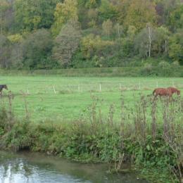 jardin - Location de vacances - Montville