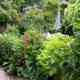 Jardin reposant et très fleuri - Location de vacances - Veules-les-Roses