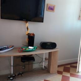 télé écran plat,radio,lecteur CD,lecteur clé USB MP 3 Sony,,, - Location de vacances - Criel-sur-Mer