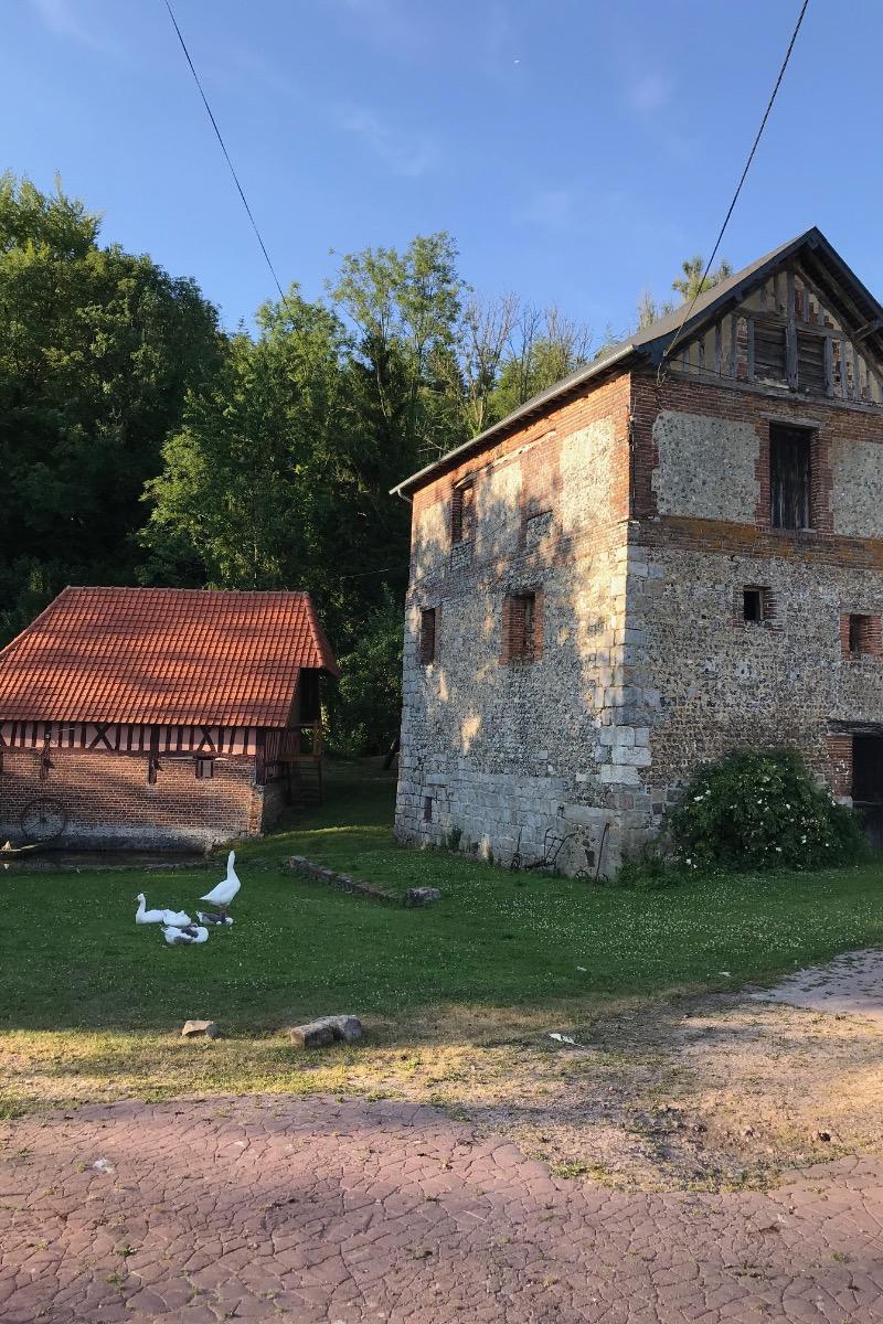 Environnement - Location de vacances - Saint-Germain-sous-Cailly