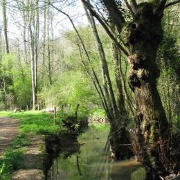 Le ruisseau de la vallée de l'Hermitain, une balade à faire sur la commune des Fontenelles  - Location de vacances - Sainte-Néomaye