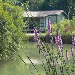 piscine couverte et chauffée - Location de vacances - Chef-Boutonne