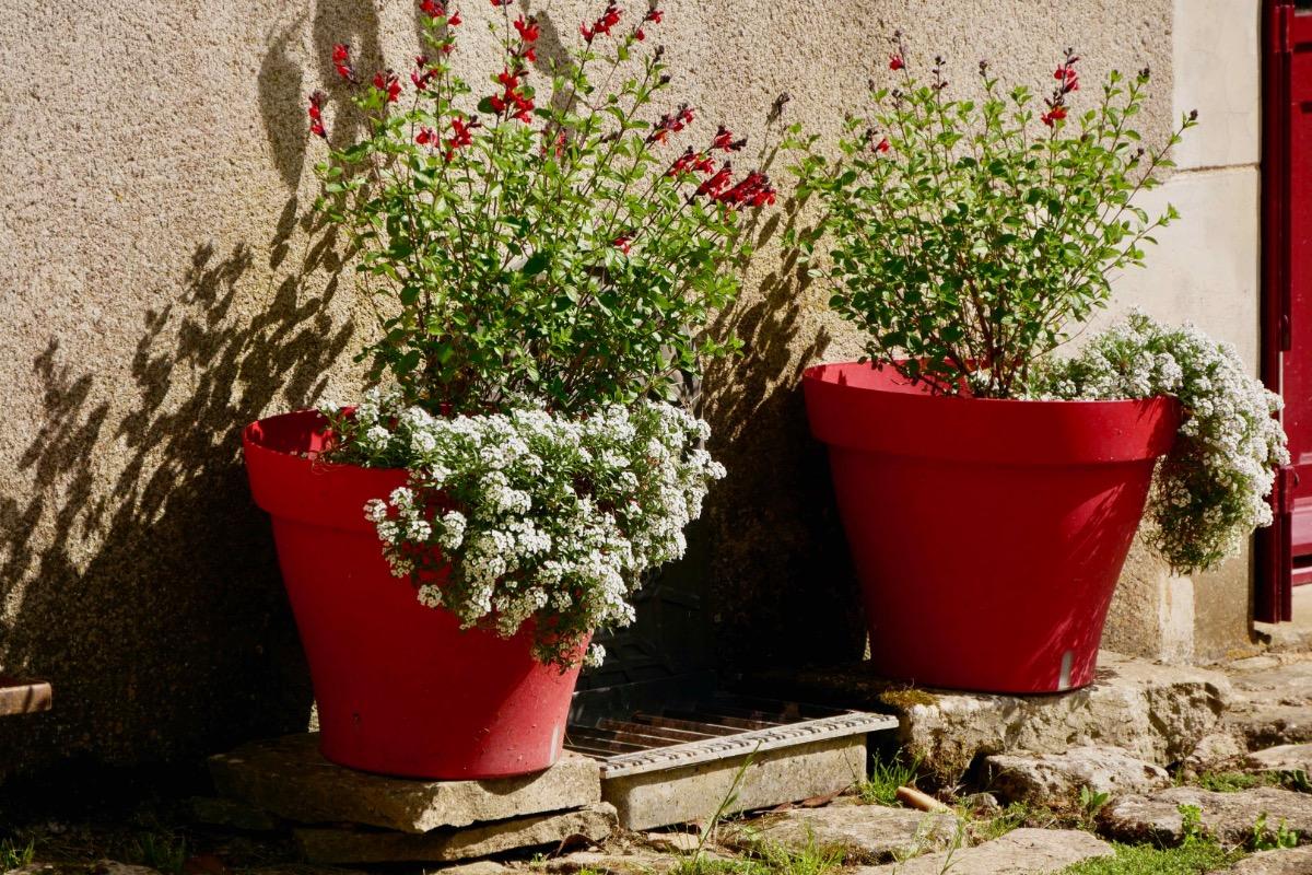 cuisine-séjour - Location de vacances - Saint-Marc-la-Lande