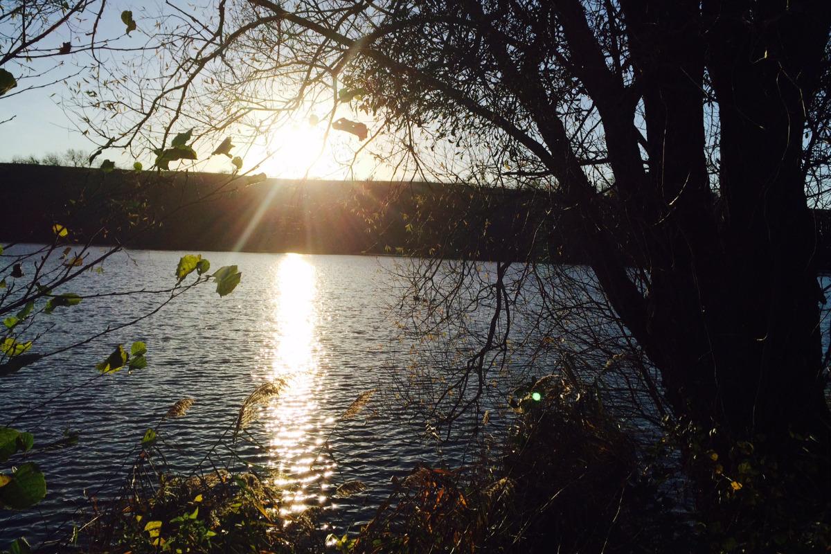 Lac de Baion à 3kms - Location de vacances - Sauville