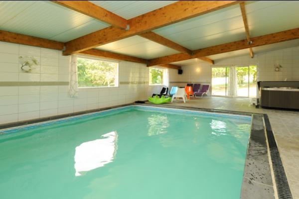 piscine 10m x 5 - Location de vacances - Saint-Pierremont