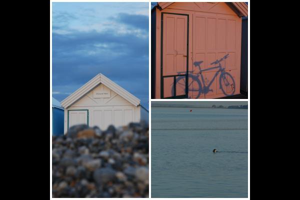 Images de Cayeux sur Mer - Location de vacances - Cayeux-sur-Mer