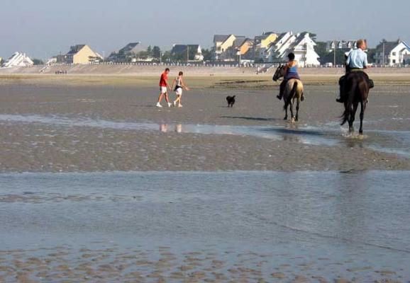 La maison vue de la plage - Location de vacances - Le Crotoy