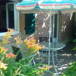 La terrasse sous le figuier - Location de vacances - Pendé