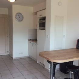 Coin cuisine avec lave-vaisselle, Four micro-ondes combiné, frigo, plaque de cuisson - Location de vacances - Cayeux-sur-Mer