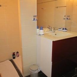 salle d'eau - Lisle Sur Tarn - Tarn - Chambre d'hôtes - Lisle-sur-Tarn