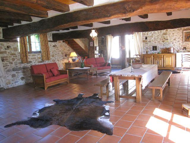 salon, séjour et cheminée