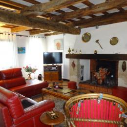 salon  -Tarn - Venès - Albi - Castres - Location de vacances - Vénès