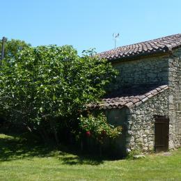 Jardin, vue sur le gîte - Cestayrols - Tarn - Location de vacances - Cestayrols
