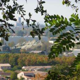 la cathédrale Sainte Cécile vue de la terrasse  - Albi - Tarn - - Location de vacances - Cunac