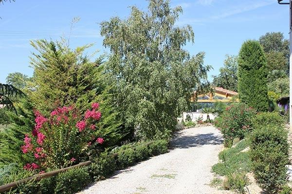 Allée de jardin - Lautrec - Tarn -  - Location de vacances - Lautrec