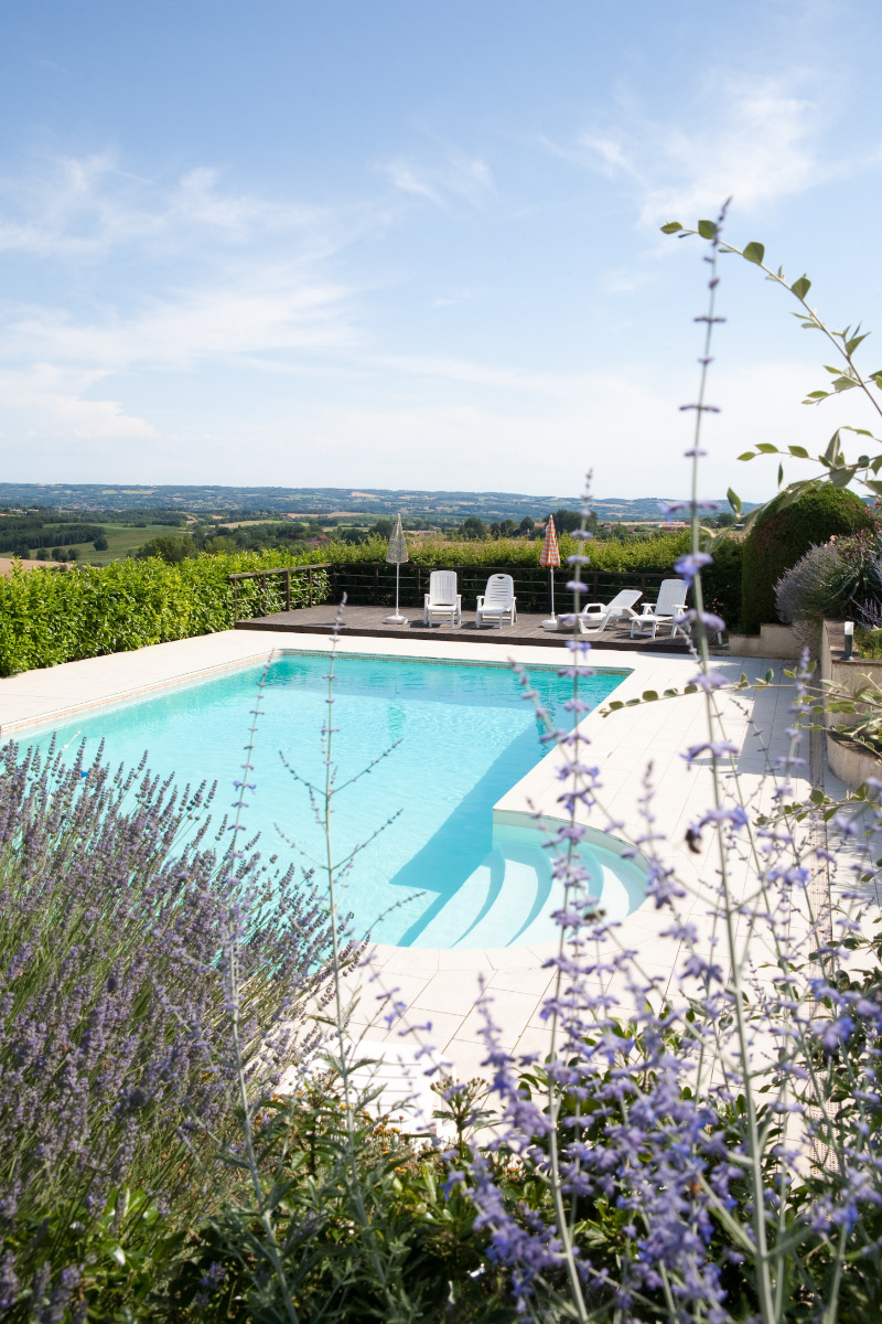 piscine fleurs de lavande - Location de vacances - Cadalen