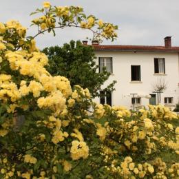 Tarn - Terssac - gîte à l'entrée d'Albi - 6 personnes - 3 chambres - Location de vacances - Terssac