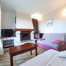 Maison à Lisle sur Tarn salon - Location de vacances - Lisle-sur-Tarn