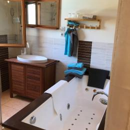 - Location de vacances - Lisle-sur-Tarn