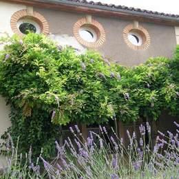 - Chambre d'hôtes - Saint-Nicolas-de-la-Grave