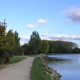 - Location de vacances - Beaumont-de-Lomagne