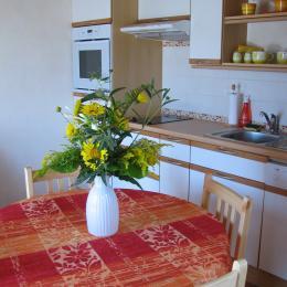 la cuisine intégrée au rez de chaussée - Location de vacances - Beaumont-de-Lomagne