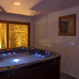 Piscine chauffée, arche du 13ème siècle - Location de vacances - Maubec