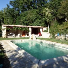 la piscine, transats, terrasse couverte, baby foot, billard, wc, douche extérieure, lavabo, salon de jardin - Location de vacances - Rians