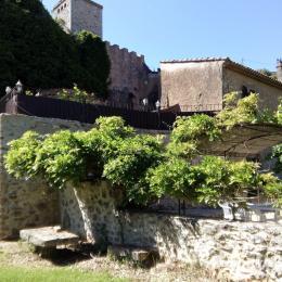 Vue du jardin et de la maison - Location de vacances - Rians
