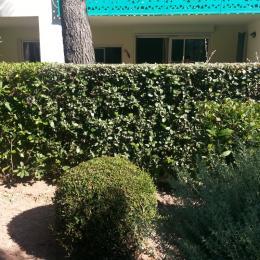 partie terrasse face salle à manger / salon avec coffre locataire - Location de vacances - Saint-Raphaël