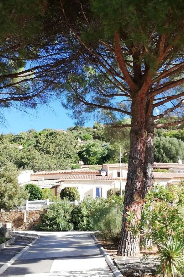 Résidence - Location de vacances - Cavalaire-sur-Mer