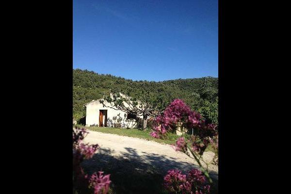 - Location de vacances - Le Barroux