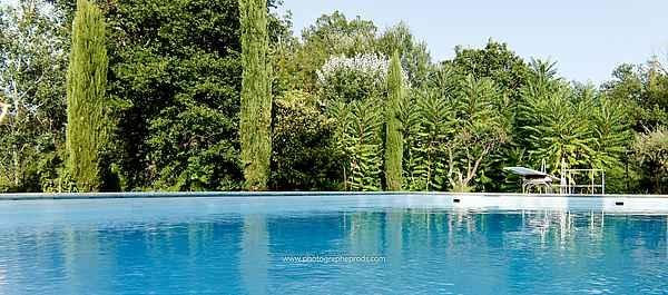 vue piscine  coté fosse plongeon de 3m et son plongeoir - Location de vacances - Carpentras