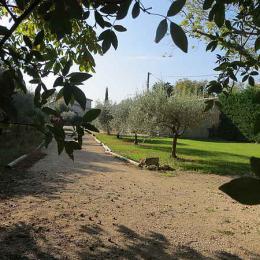 - Location de vacances - Sainte-Cécile-les-Vignes