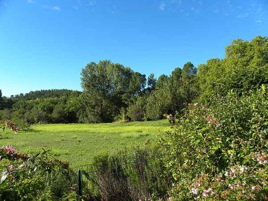 Le grand champ devant la maison - Location de vacances - Roussillon