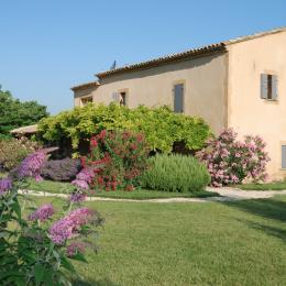 Jardin coté entrée Glycine - Location de vacances - Villedieu