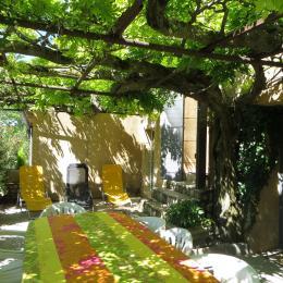 terrasse ombragée - Location de vacances - Villedieu