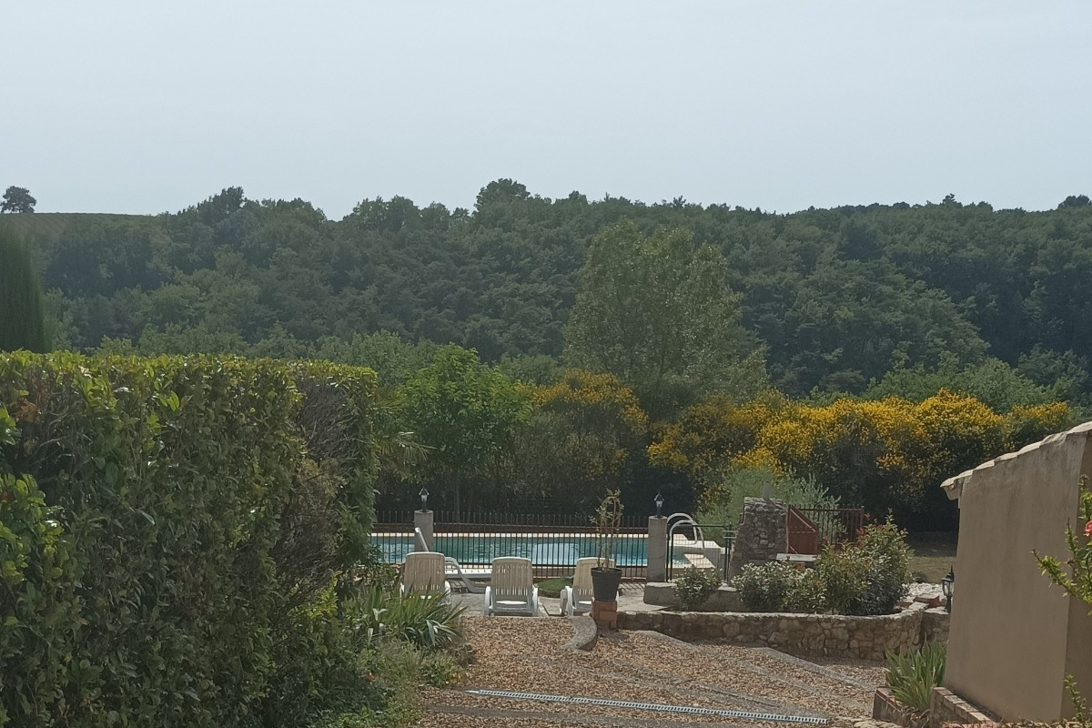 La piscine dans un écran de verdure - Location de vacances - Valréas