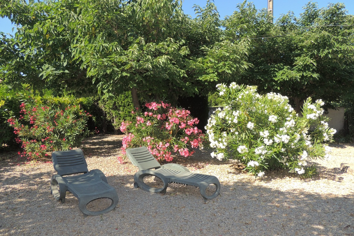 terrasse et jardin - Location de vacances - Carpentras