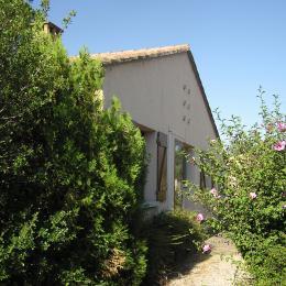 Maison côté rue - Location de vacances - L'Isle-sur-la-Sorgue