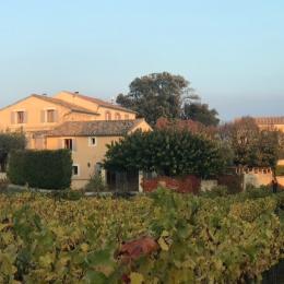 Jardin privé, clos et ombragé, équipé de mobilier de jardin et d'un barbecue - Location de vacances - Vaison-la-Romaine